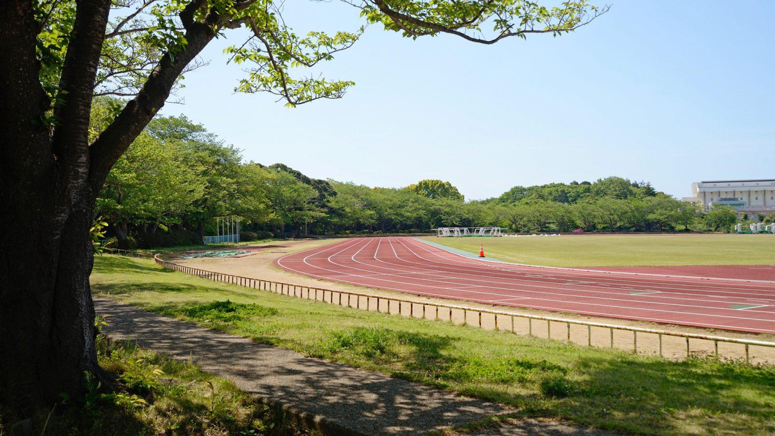 新緑の、千葉県船橋市、運動公園、陸上競技場